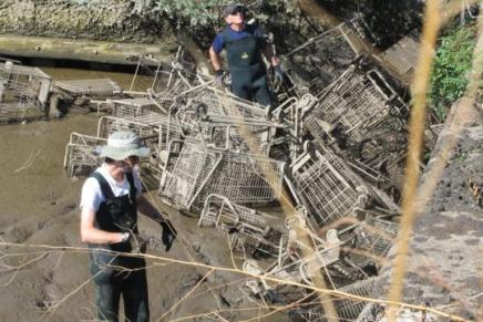 6,220 pounds of debris and 116 shopping carts removed from Delaware River Piers this weekend byvolunteers