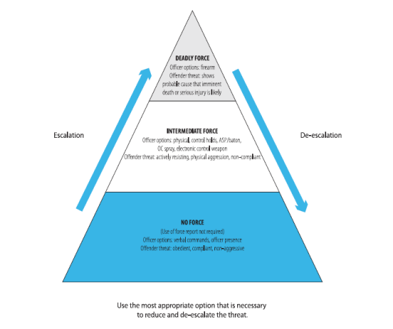 Food Pyramid. We mean